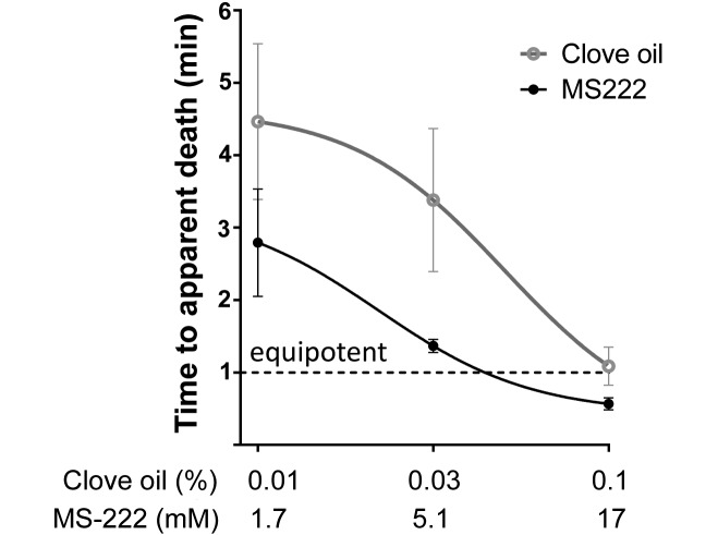 Effects of Clove Oil as a Euthanasia Agent on Blood Collection Efficiency and Serum Cortisol Levels in Danio rerio.